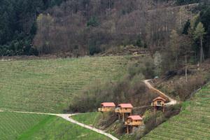 """<div class=""""bildtext_1"""">Mitten in der malerischen Umgebung der Vorbergzonedes Schwarzwalds hat Familie Huber eine Pension für Wanderer und Fahrradtouristen eröffnet. In den Hang hinein gebaut stehen die Hütten auf Stützpfeilern. </div>"""