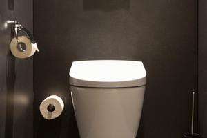 """<div class=""""bildtext_1"""">Dem Dusch-WC """"Geberit AquaClean Sela"""" sieht man die integrierte Technik nicht an. Seine schlicht-elegante Form passt gut in das Designkonzept der Hotelzimmer. </div>"""