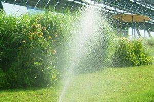 """<div class=""""bildtext_1"""">Unterflur-Beregnungsanlagen: Werden sie aus dem Trinkwassernetz gespeist, gehören nach den Regeln der Technik zur Kategorie 5 und benötigen eine Trinkwassertrennstation als Sicherungseinrichtung. </div>"""