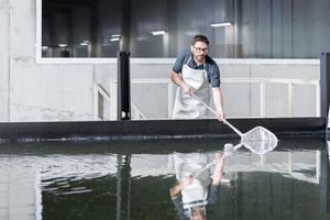 """<div class=""""bildtext_1"""">Bei der Ernte werden die Shrimps von einem Mitarbeiter mit einem Kescher aus dem Becken geholt und in einen Behälter mit eiskaltem Wasser gegeben. In ihren Becken herrscht eine Wassertemperatur von 28 °C, im Behälter ist Salzwasser mit minus 4 °C. Durch diesen Prozess werden die Shrimps schockgekühlt.</div>"""