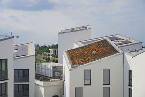 """<div class=""""bildtext_1"""">600 Panasonic """"HIT""""-Module mit 195 kWp Gesamtleistung sind auf den Dächern von Future Living Berlin installiert. Sie erzeugen CO<sub>2</sub>-freien Strom für die Luft-/Wasser-Wärmepumpen.</div>"""