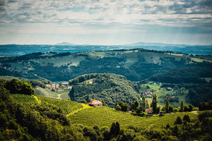 """<div class=""""bildtext_1"""">Im ältesten Weinbaugebiet der Steiermark produziert Familie Schneeberger auf über 100 Hektar Rebfläche hochwertige Qualitätsweine. Die mineralischen Schiefer- und Muschelkalkböden sorgen für ausgezeichnete Bedingungen.</div>"""