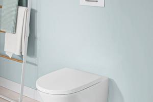 """<div class=""""bildtext_1"""">Mit der neuen nachhaltigen WC-Spültechnologie """"TwistFlush"""" sorgt Villeroy &amp; Boch für bessere Toilettenhygiene bei einem deutlich geringeren Wasserverbrauch. </div>"""